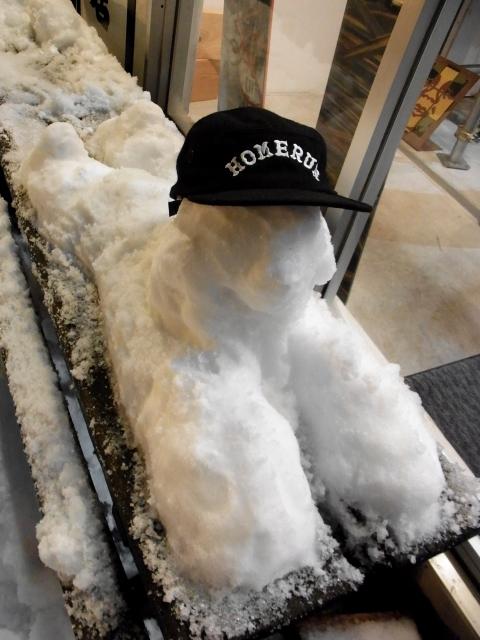 雪すべりこみ